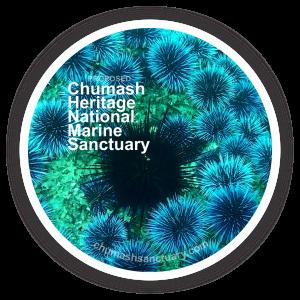 CHNMS Logo