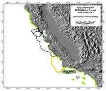 5 kelp map