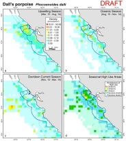 75b-Dall's porpoise density